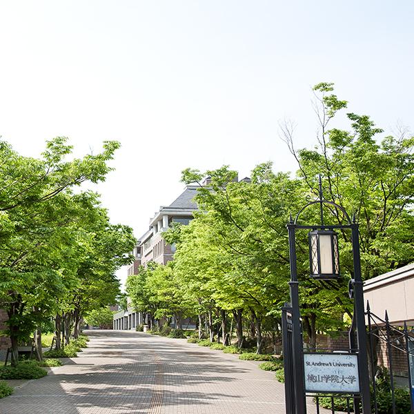 大学 桃山 学院